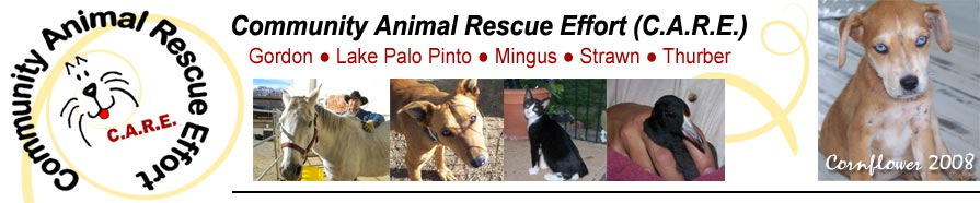 Community Animal Rescue Effort